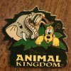 21479 - WDW - Disney's Animal Kingdom - Pluto