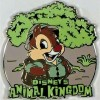 22267 - WDW - Disney's Animal Kingdom Mystery Collection - 2018 - Dale ONLY