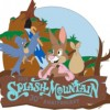 27300 - D23 2019 - Splash Mountain 30th Anniversary